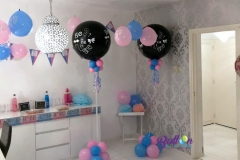 Balloon-Styling-gender-tweeling-reveal-bekendmaking-geslachtsbepaling-he-or-she-baby-boy-baby-girl-Tilburg-Reeshof