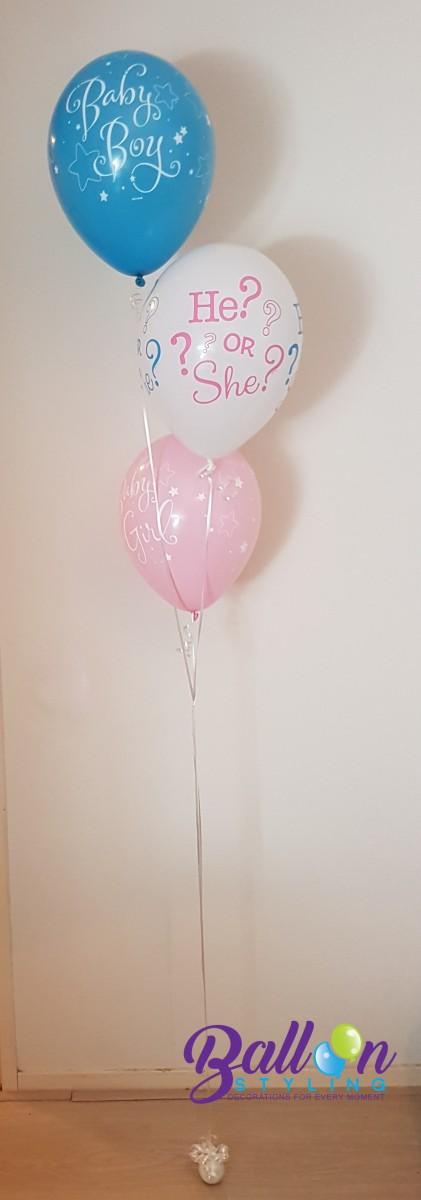 Balloon Styling gender reveal bekendmaking geslachtsbepaling he or she baby boy baby girl Tilburg Reeshof